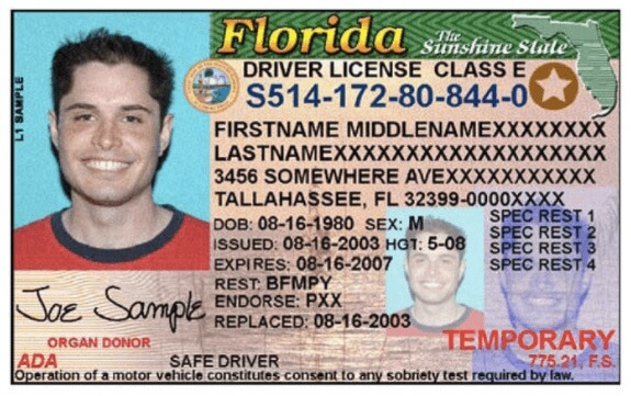 imágenes de florida department of drivers license check