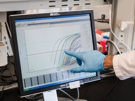 Photo of a researcher pointing at a monitor.