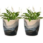 Set Of 2 Ceramic Speckled Flower Pots