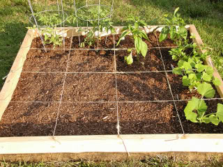 How to Build Your Own Square Foot Garden in 10 Easy Steps | Mark's Daily Apple