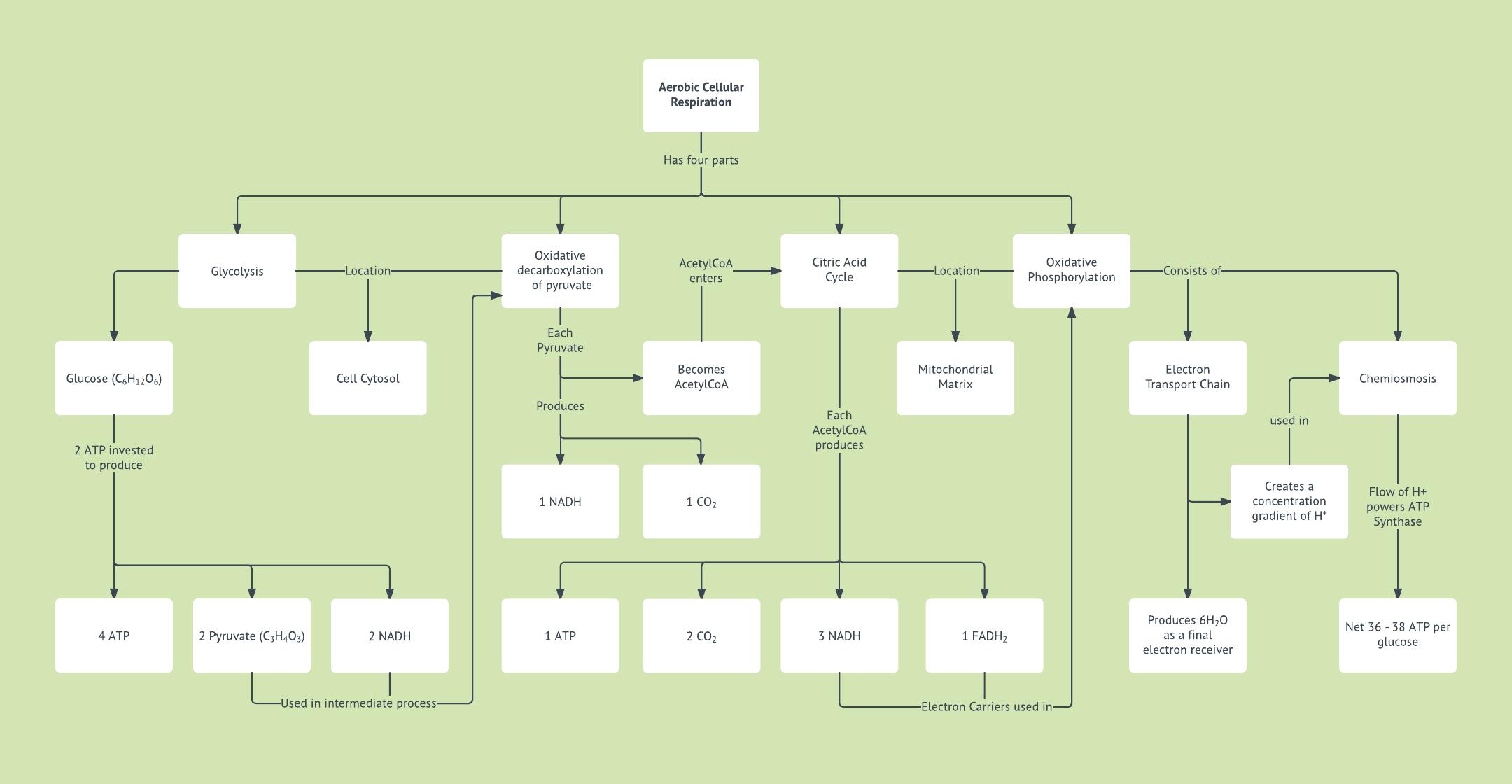 Network Topology Worksheet