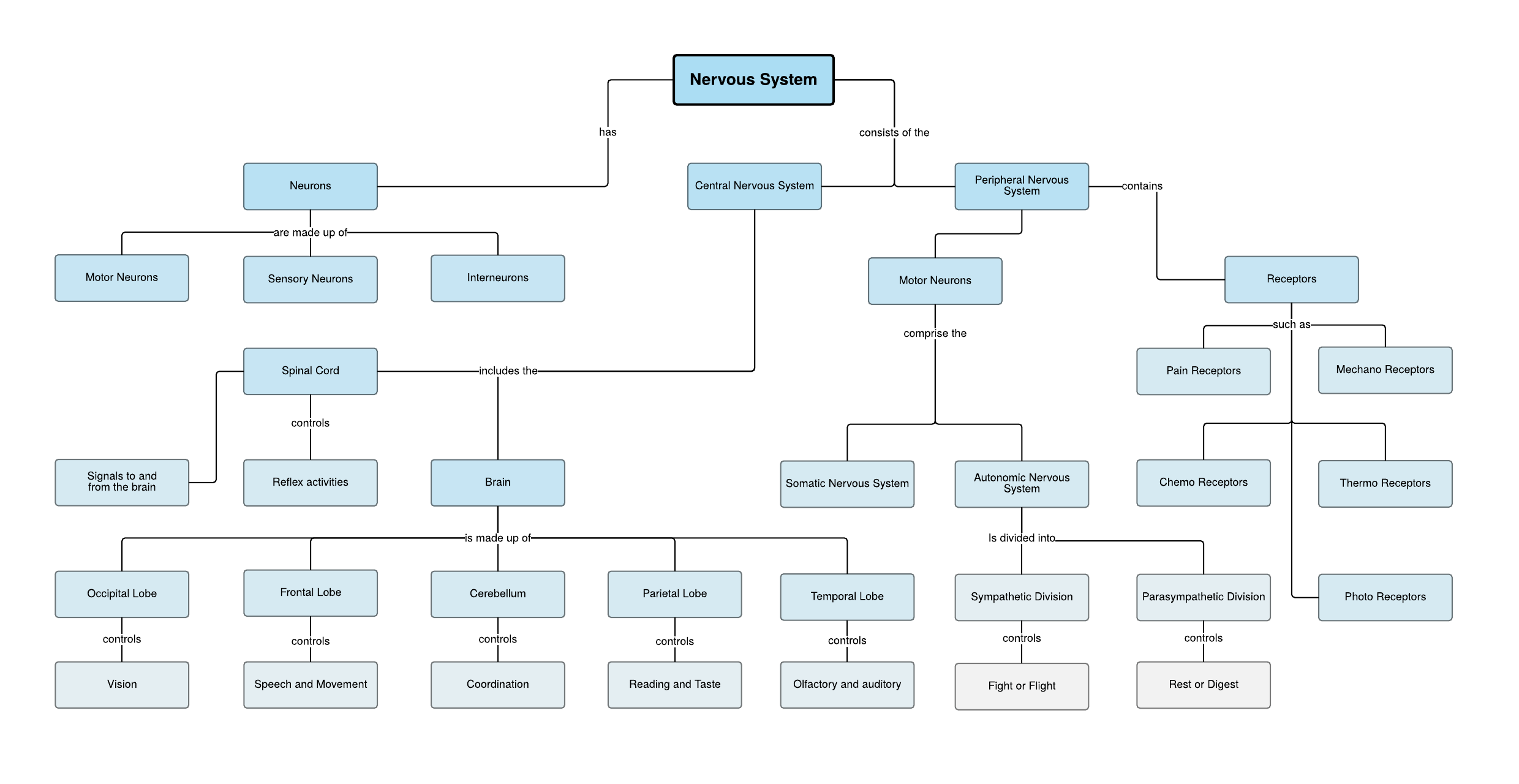 Concept Map Examples And Templates