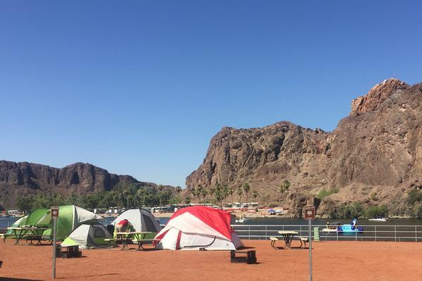 Buckskin Camping along the Colorado River