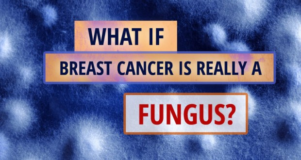 Cancer-Fungus