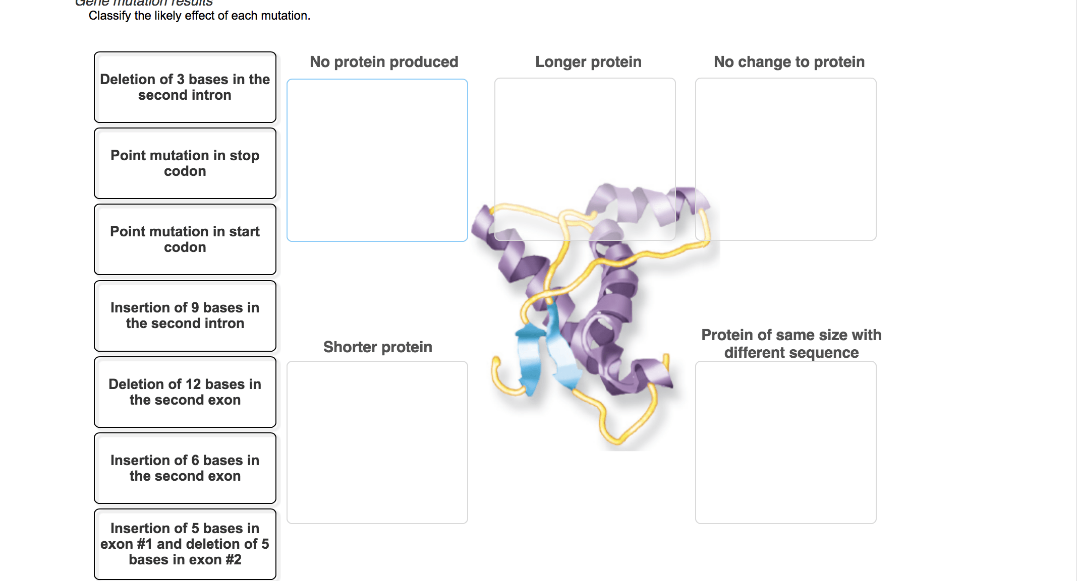 Central Dogma Arrange The Following Parts And Proc