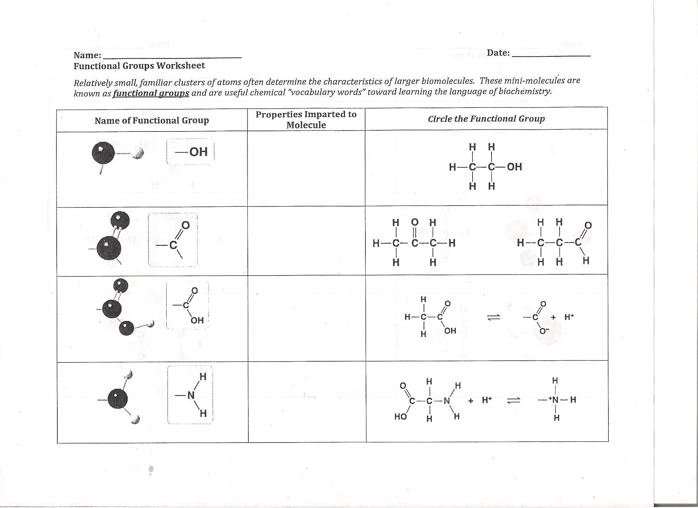 Solved Date Name Functional Groups Worksheet Relatively