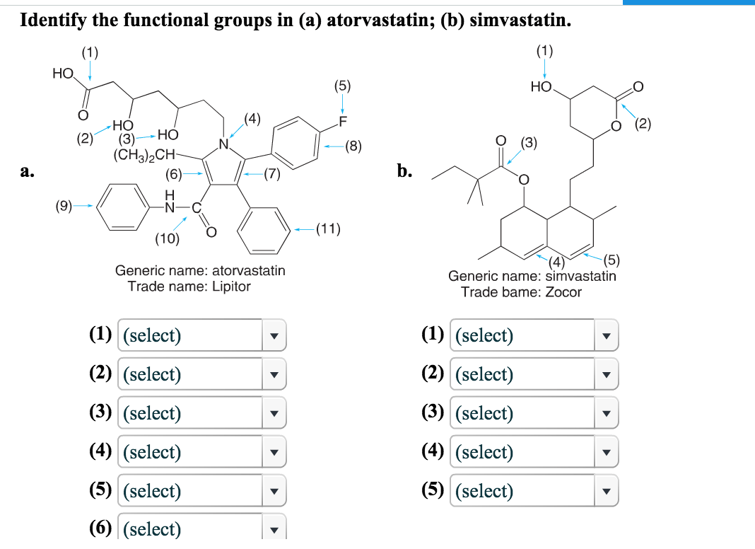 Solved Identify The Functional Groups In A Atorvastatin