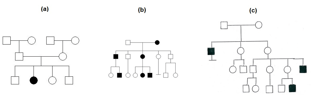 Solved Consider Pedigrees A B And C And Determine