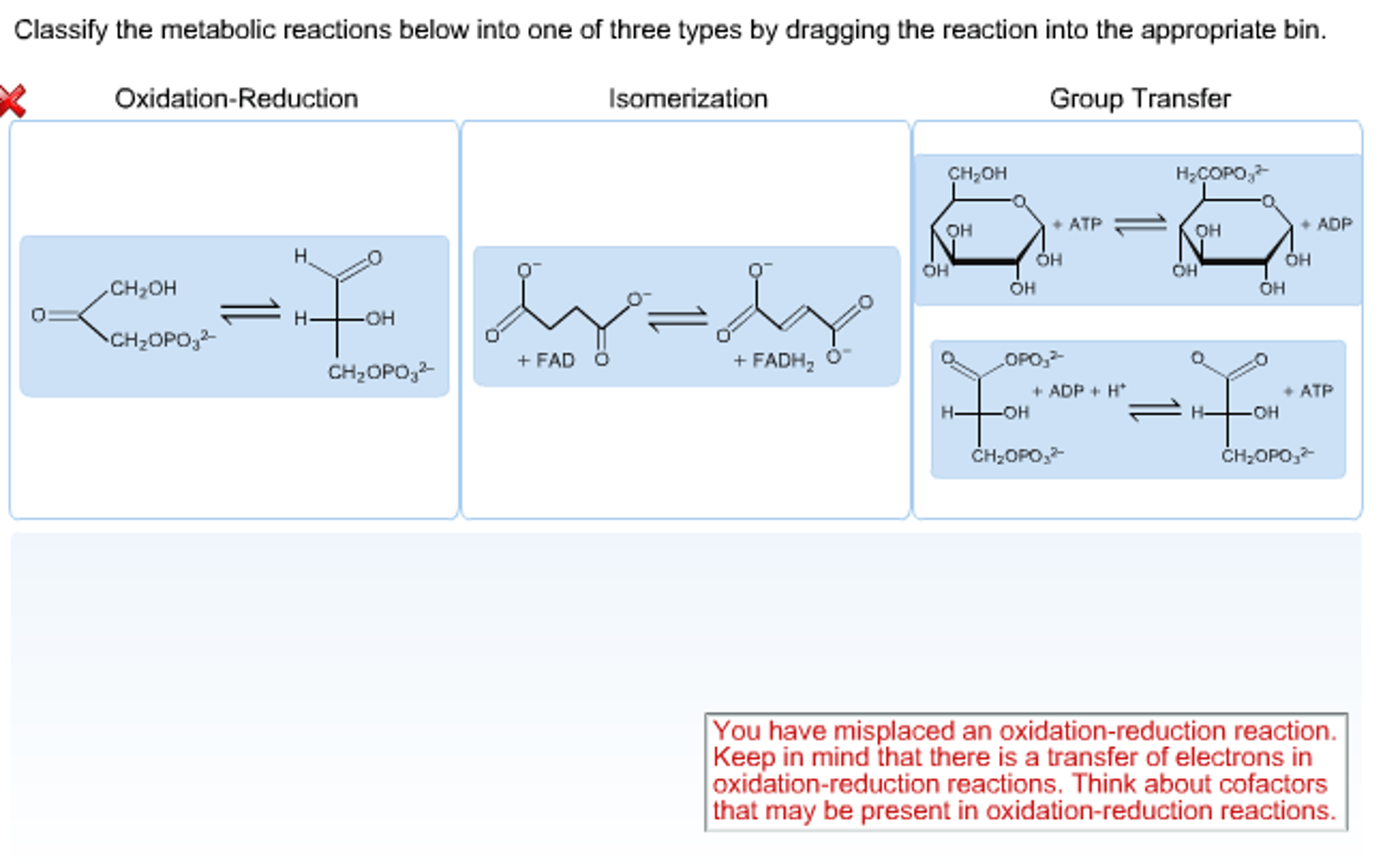Solved Classify The Metabolic Reactions Below Into One Of