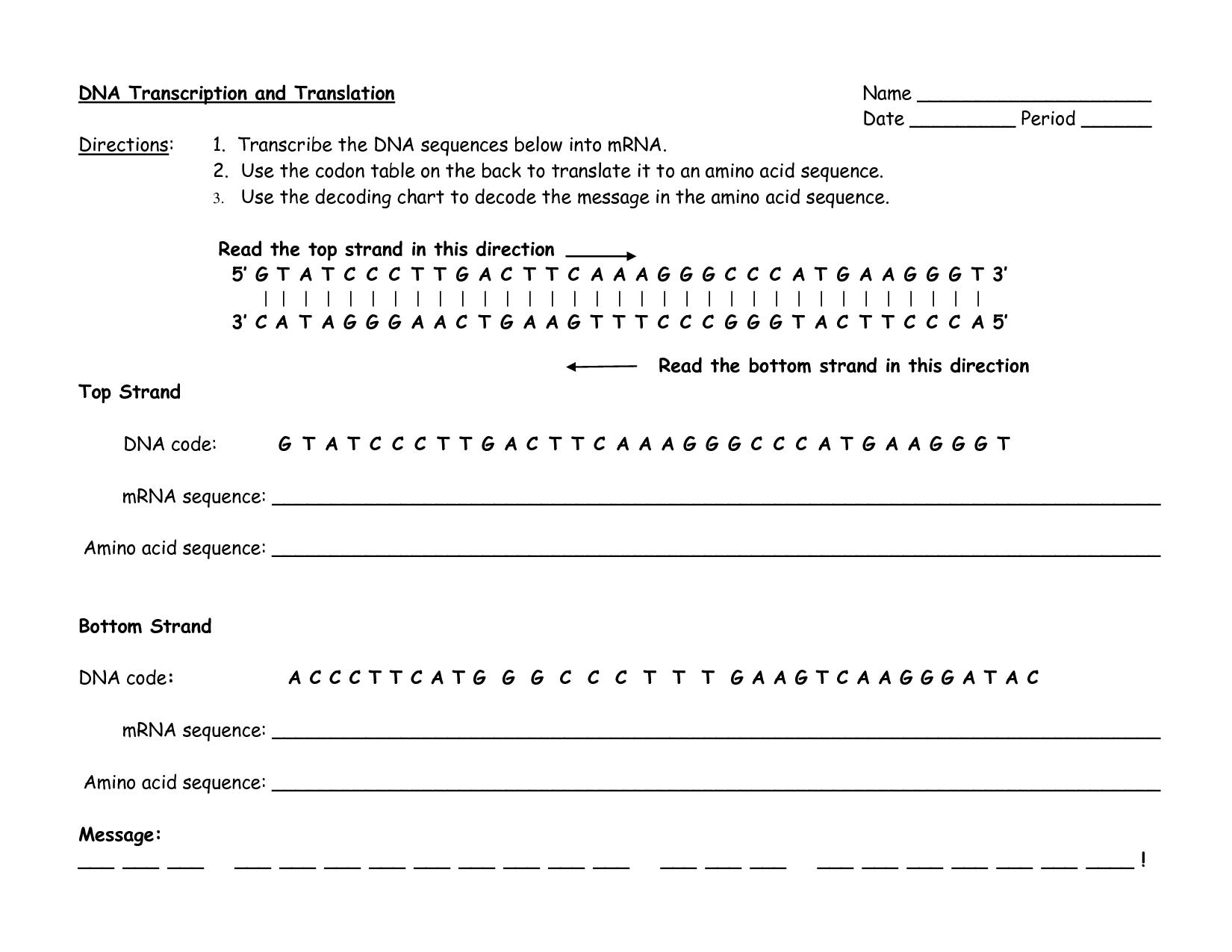 Solved Dna Transcription And Translation Directions 1 T