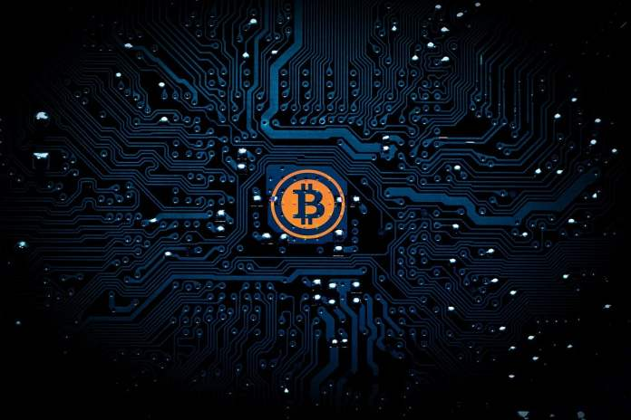 pakistani bitcoin founder