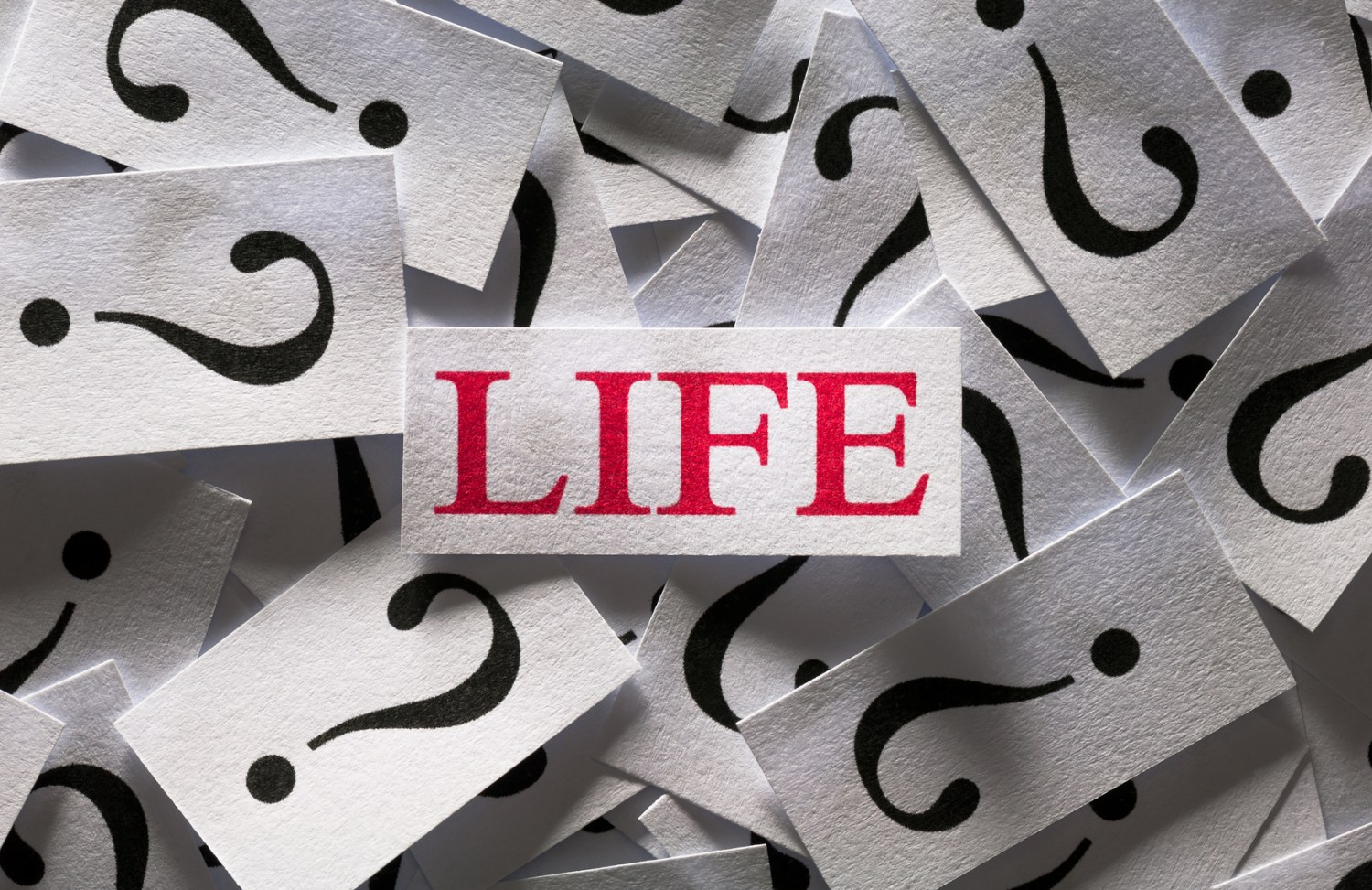 Who will you name as your Life Insurance beneficiary?