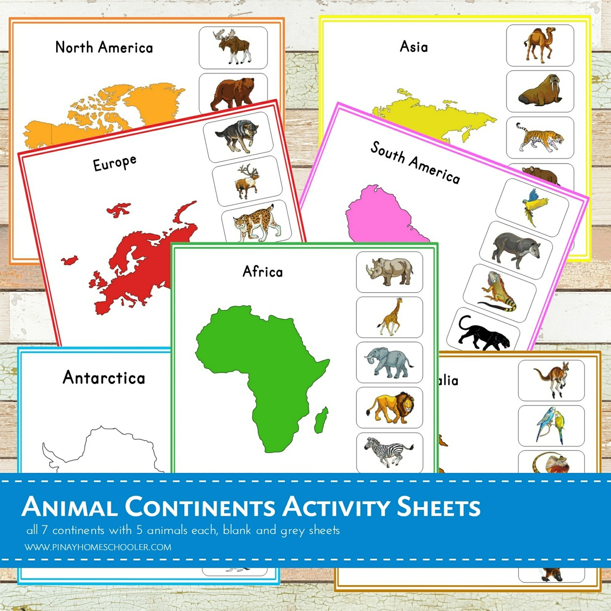 Animal Continents Activity Sheets
