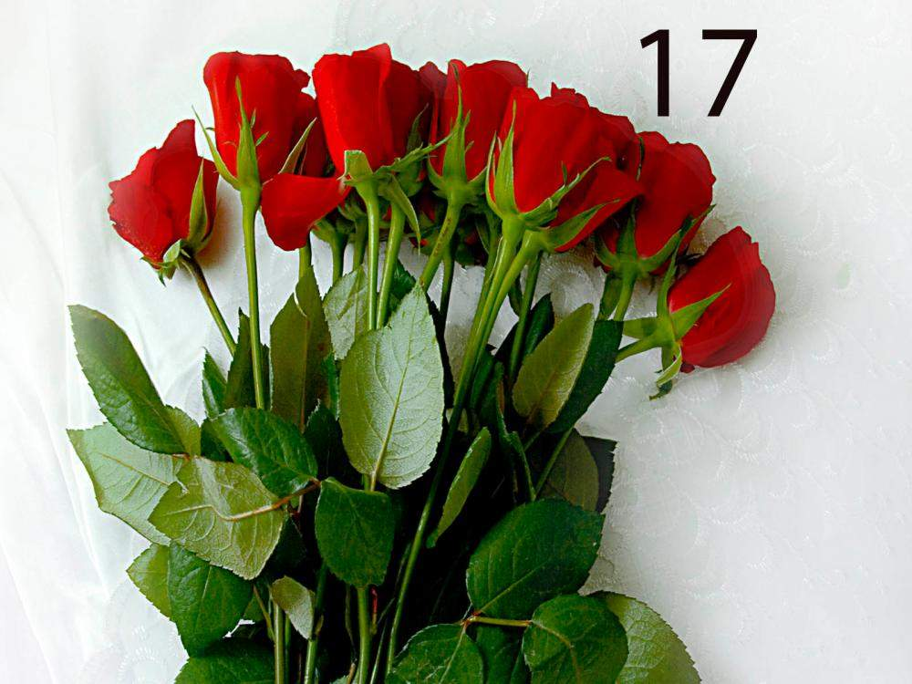 Flower Is A Best Things For Wishing Someone On Them Happy Day Like Birthday Anniversary Marriage Occasion And Many More So In Hyderabad City We Go To One