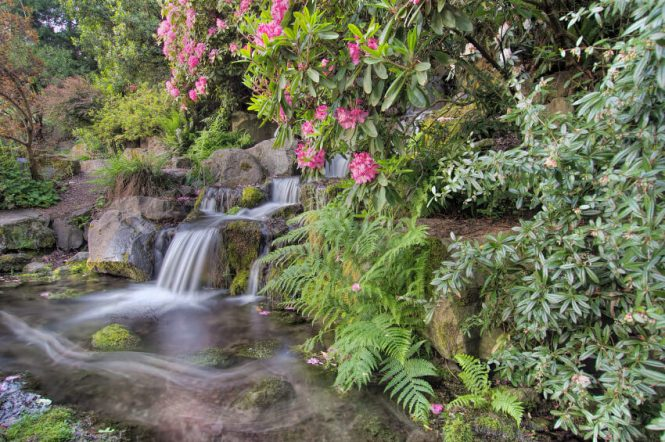 beautiful flower gardens waterfalls - Beautiful Flower Gardens Waterfalls
