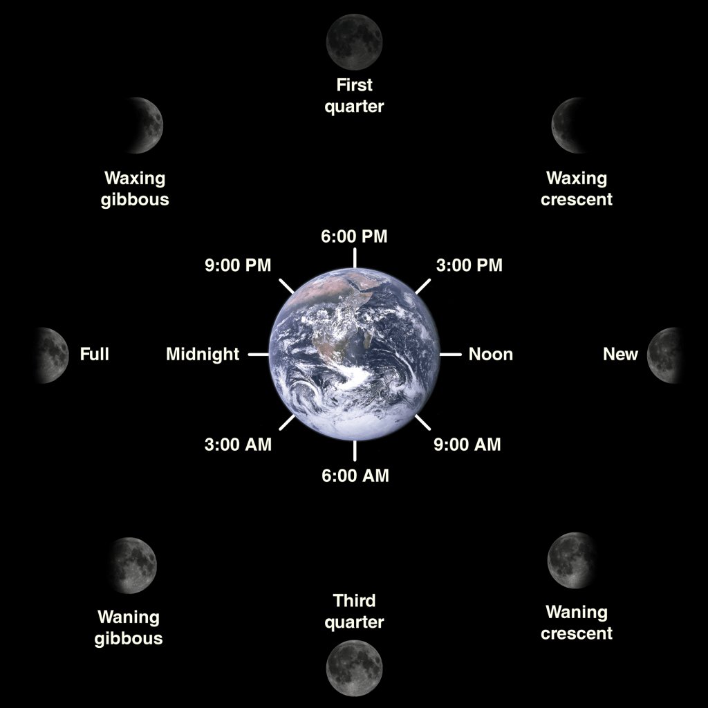 Related Keywords Amp Suggestions For Lunar Phases Diagram