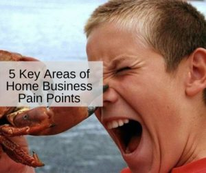 5 Key Areas of Home Business Pain Points