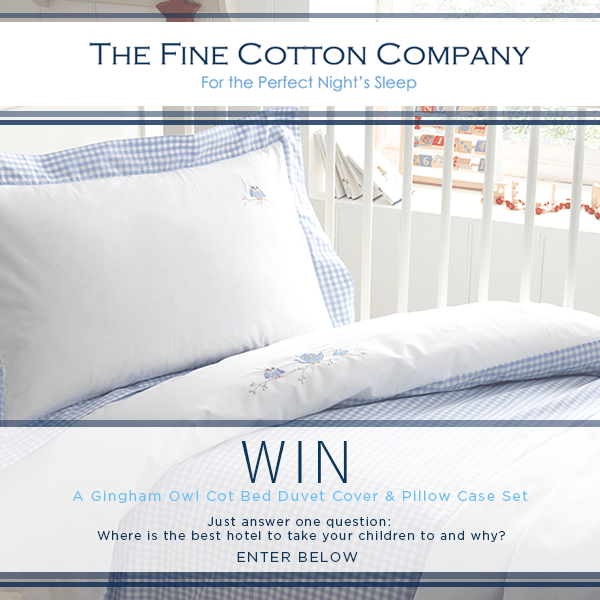WIN! A Gingham Owl Duvet Cover & Pillow Case Set!