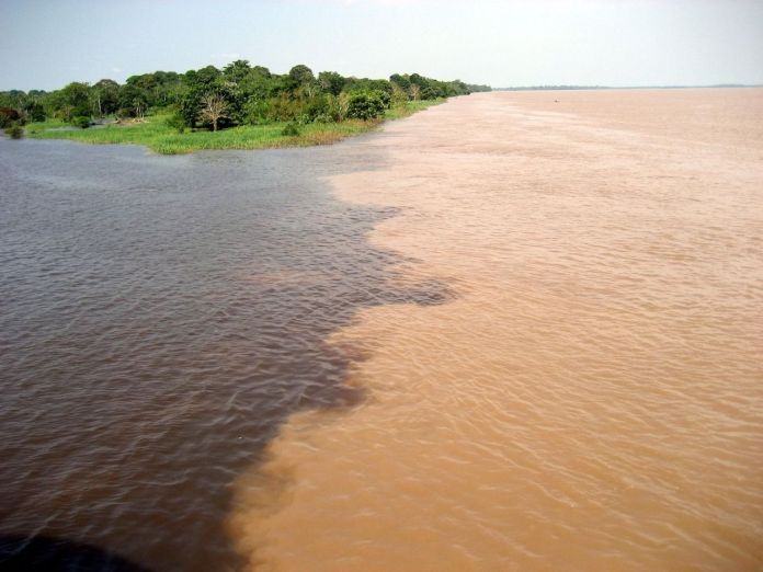 Meeting of the Waters in the Amazon