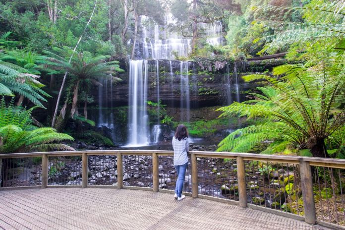 A person looking at Russell Falls in Mt Field National Park near Hobart in Tasmania, Australia