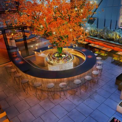 London's Best Rooftop Bars