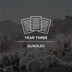 Year 3 Bundles