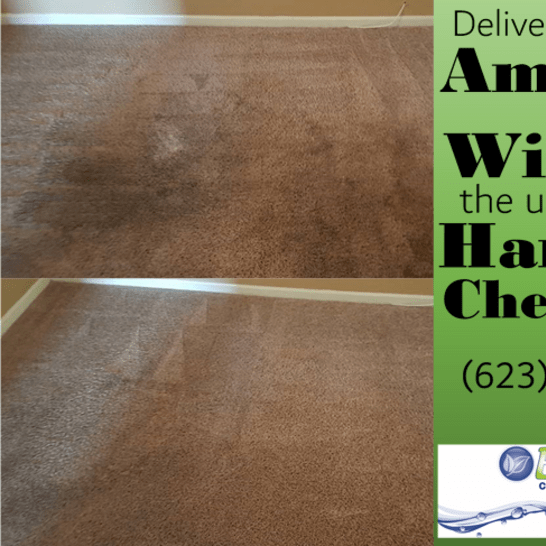eco clean carpet and tile care of