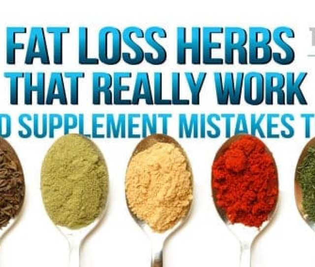 Tmhs   Fat Loss Herbs That Really Work And Supplement Mistakes To Avoid