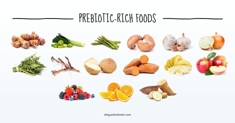 Are Prebiotics Good For My Health?