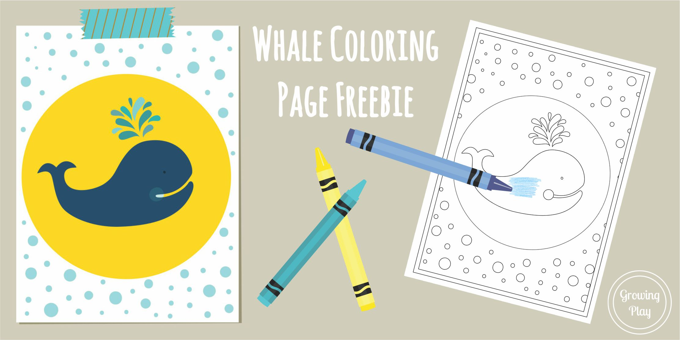 Simple Coloring Page Whale Freebie