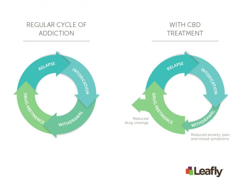 Regular cycle of addiction vs. with CBD treatment