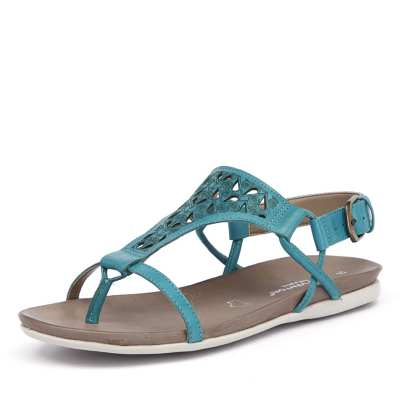Gino Ventori Move Turquoise (Blue, Green)