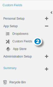 Add Custom Fields 2