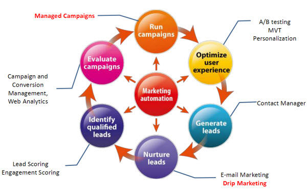 How to convert leads into clients