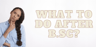 What To Do After B.Sc