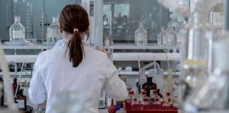 Career in Doctoral Studies