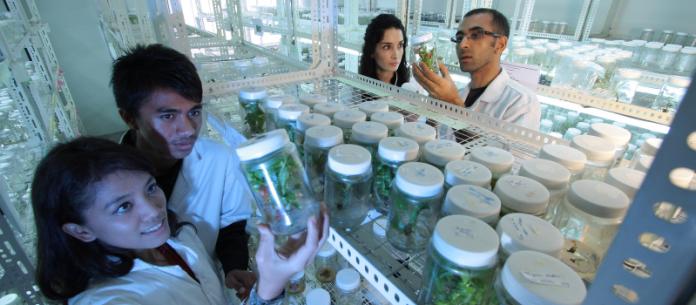 jobs after Msc Biotechnology