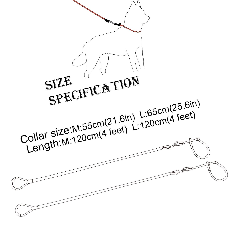 Dog Nylon Rope Leash Slip Collar Leash Set Mountain Climbing Rope Heavy Duty 4ft