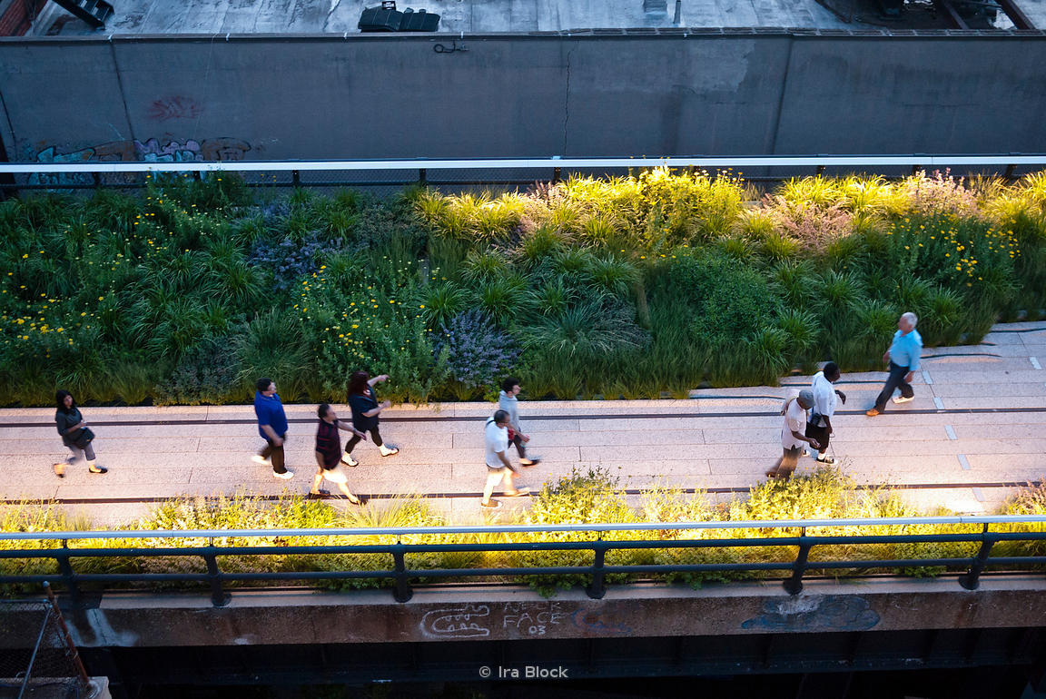Image result for people walking in the park