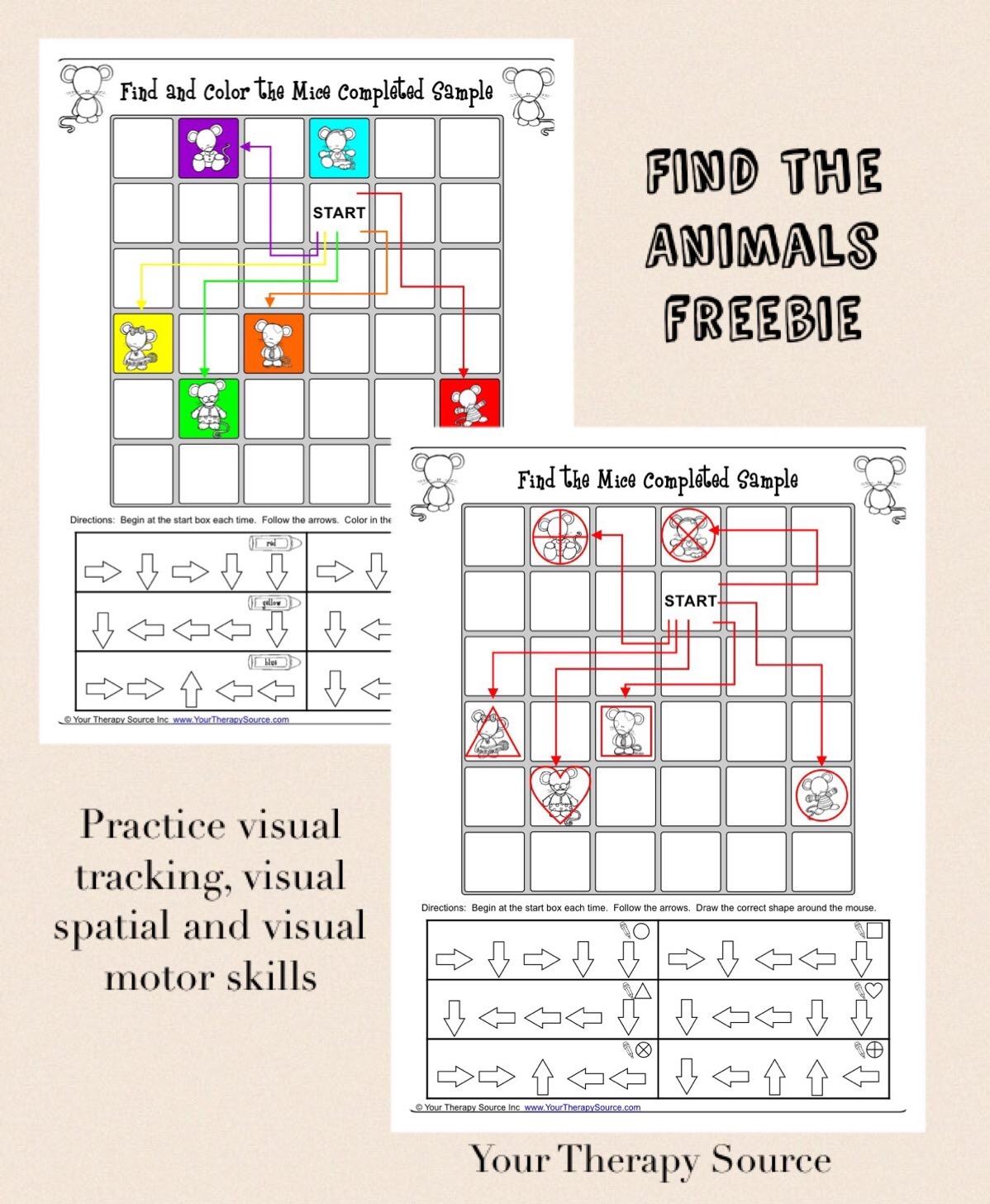 Visual Tracking And Visual Motor Freebie