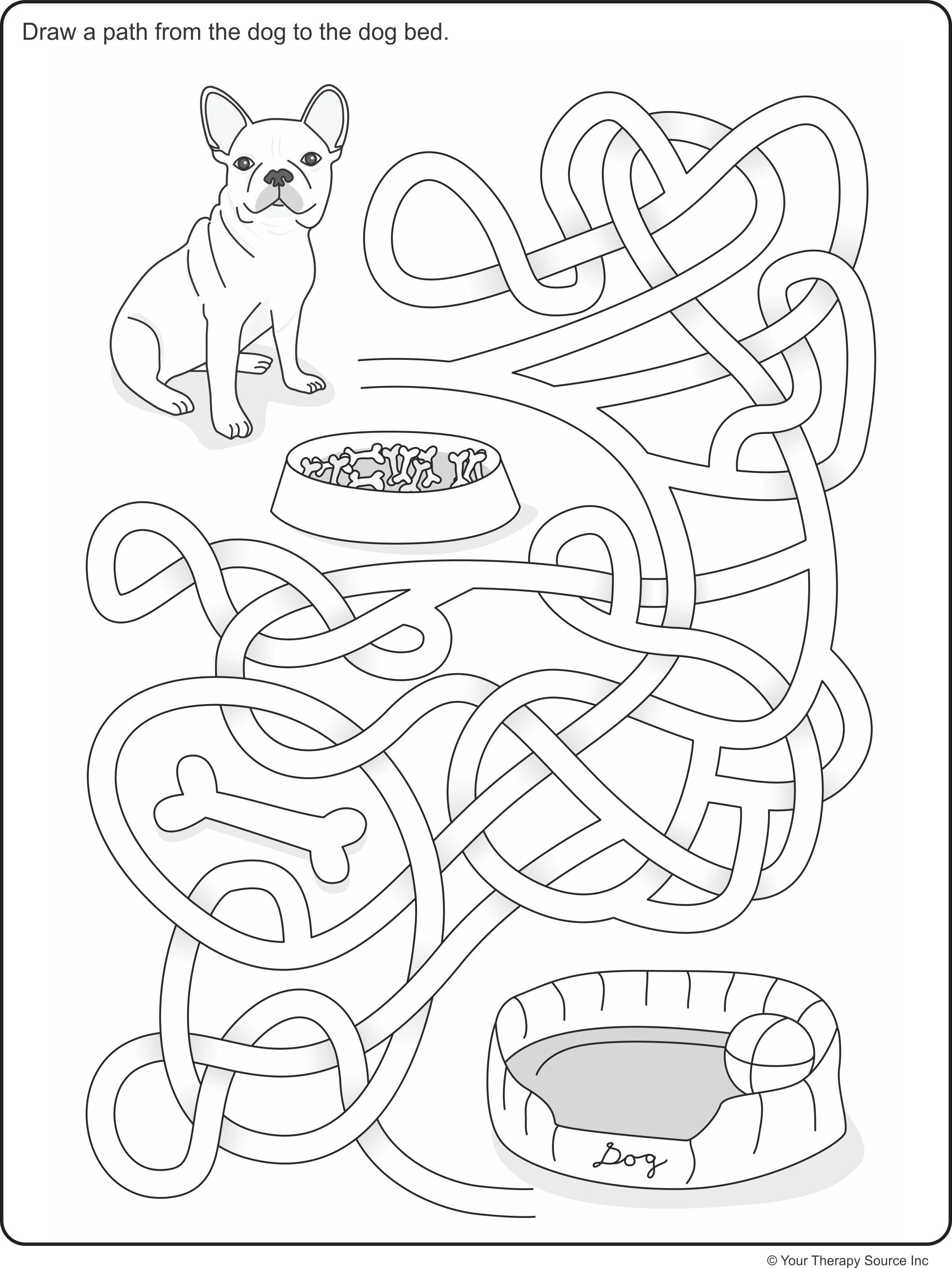 Visual Spatial Maze Freebie