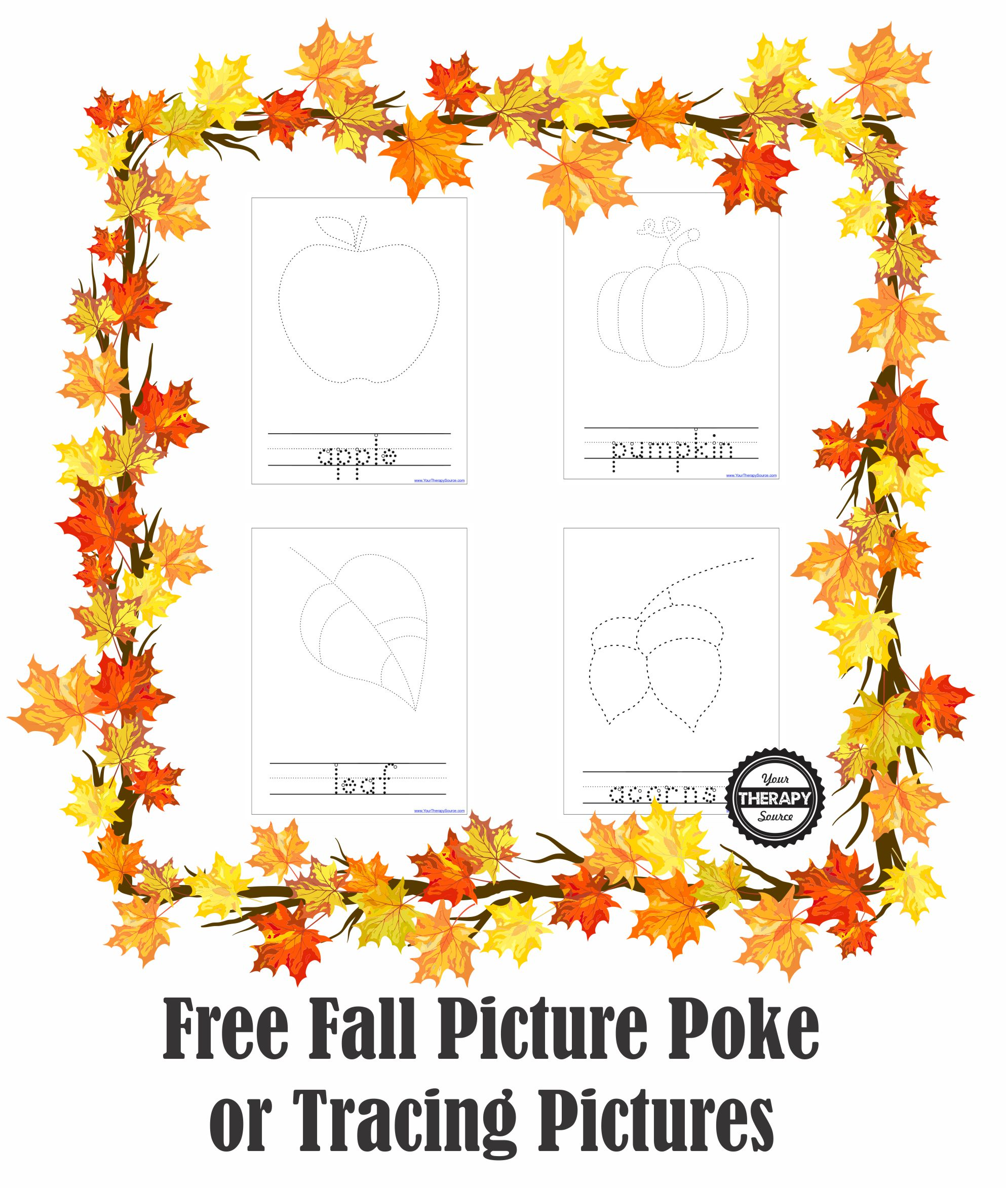 Fall Picture Pokes