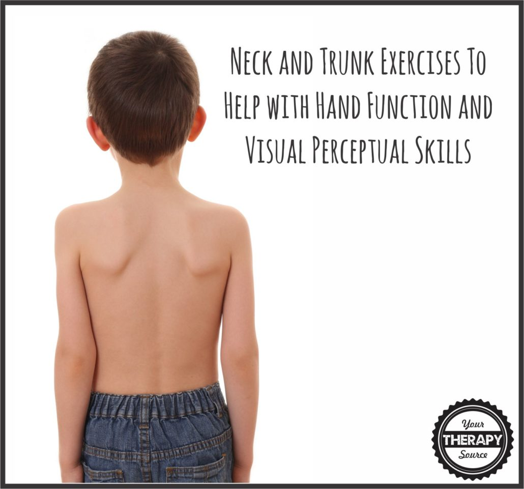 Neck And Trunk Exercises Help With Hand Function And Visual Perceptual Skills