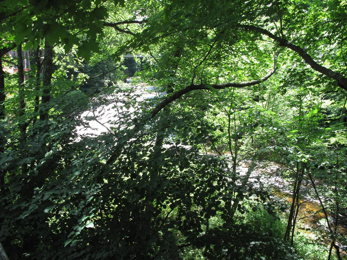 Martin Machine River
