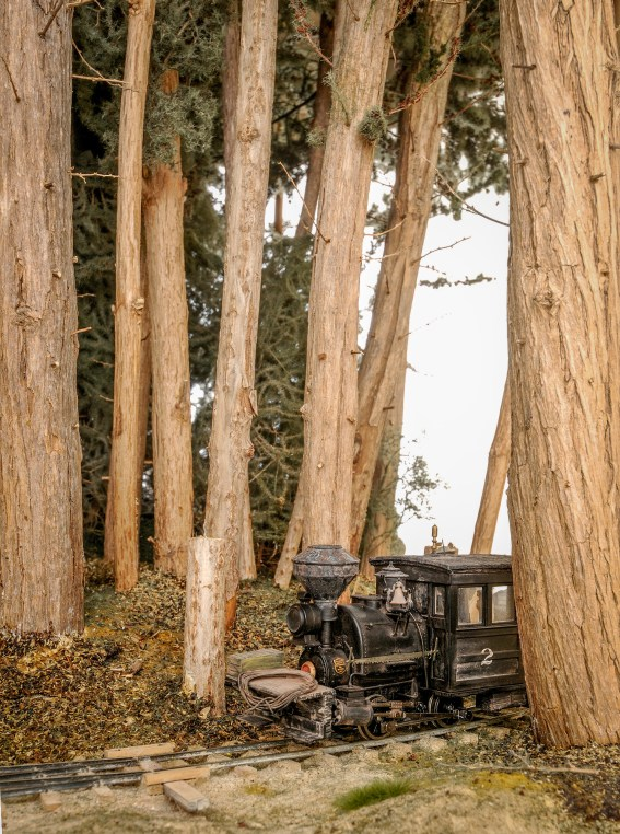 Big Trees, Small Loco
