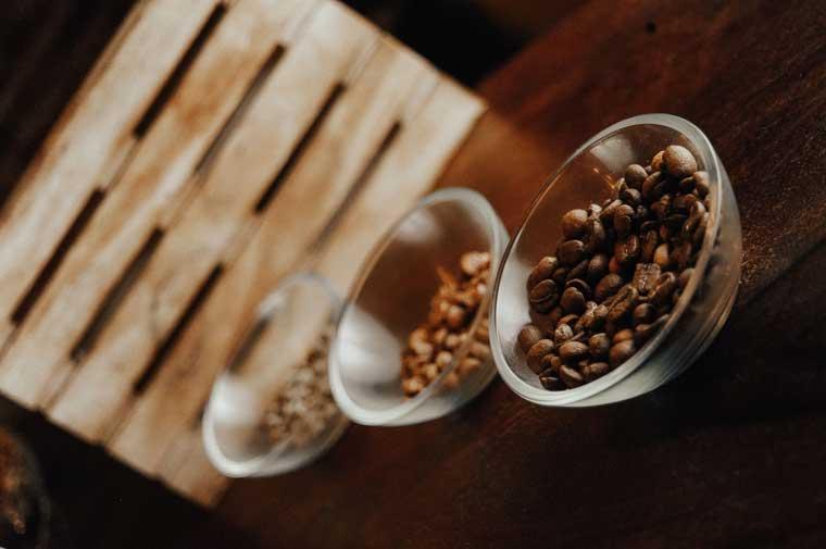 Bocono-Specialty-coffee-cafe-grano-Cafeteria-de-Especialidad