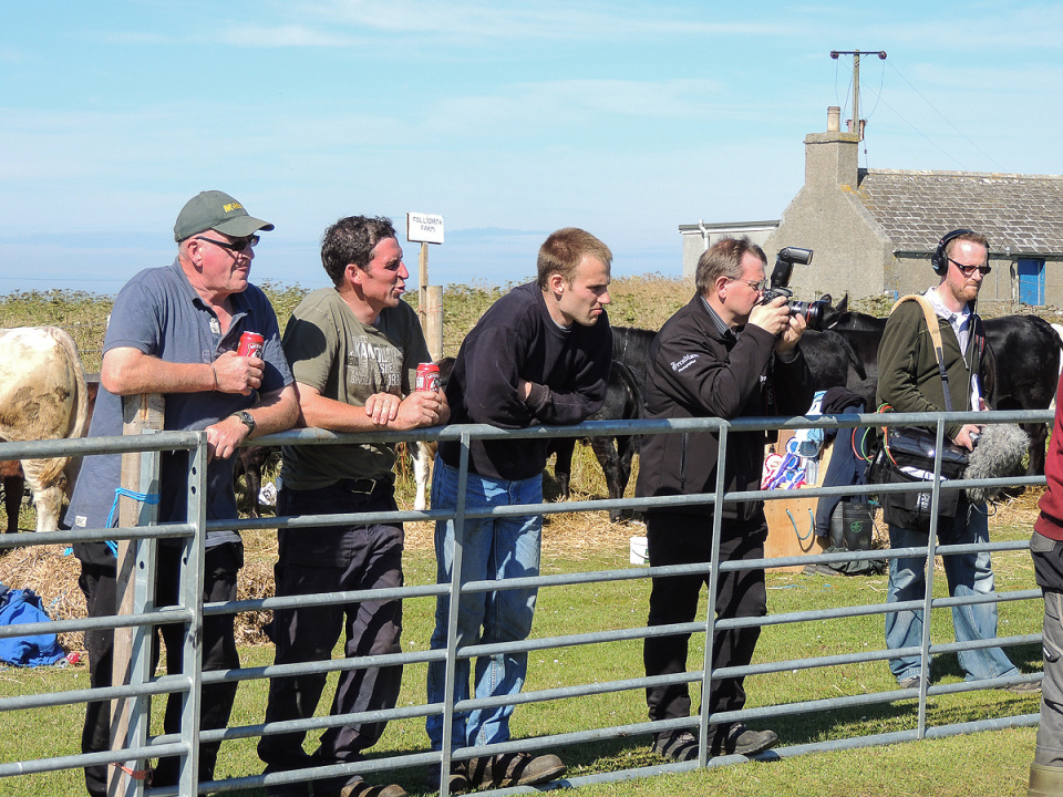 It's a serious business, stock judging