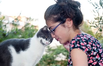 Cat Emotion Fact