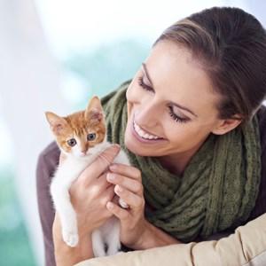 Popular Cat Fact