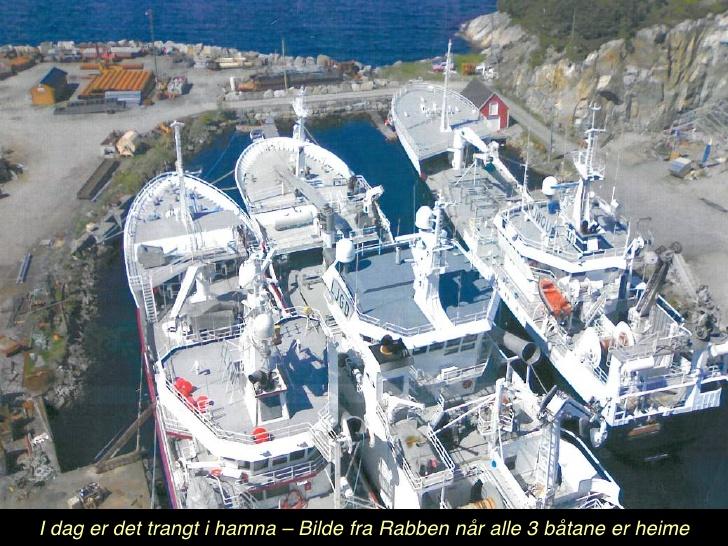 austevoll-fiskerihamn-11-728